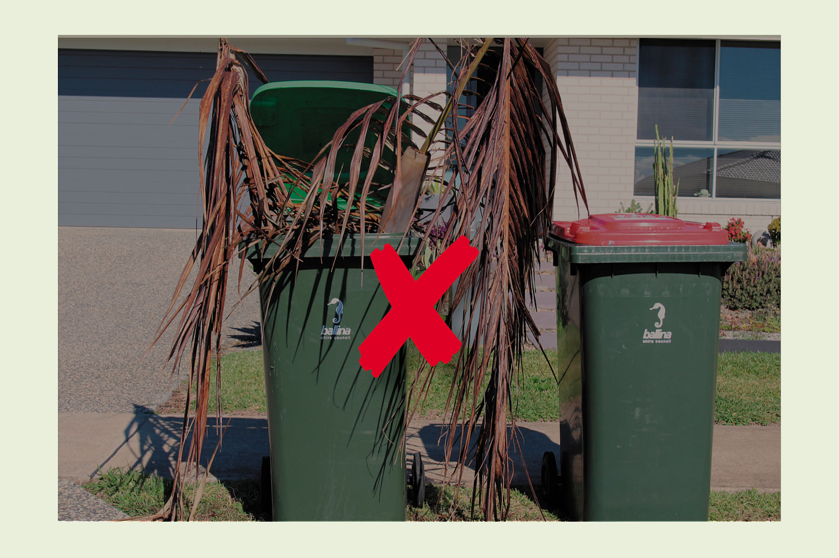 Bin overfilled with palm throngs